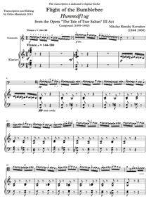 cp - Rimsky-Korsakov N. - Flight of the Bumblebee (Mandozzi)