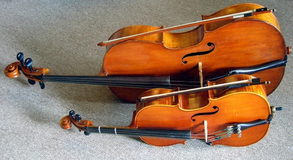 В поисках подходящей виолончели.