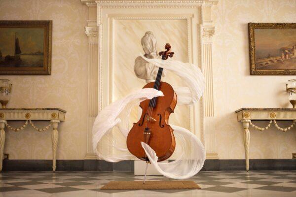 3 причины почему нужно играть на виолончели!