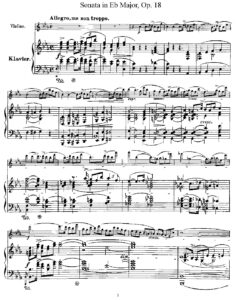 Strauss R. - Sonata Es-dur op.18 for Violin and Piano V.2
